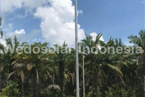 PBOX 30W Non Sensor, Perkebungan Kelapa Sawit, Luwuk Sulawesi Tengah